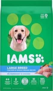 Iams ProActive Health Adult Large Breed Dry Dog Food – Affordable Pick