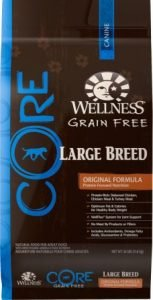 Wellness CORE Grain-Free Large Breed Chicken & Turkey Recipe Dry Dog Food - Premium Pick
